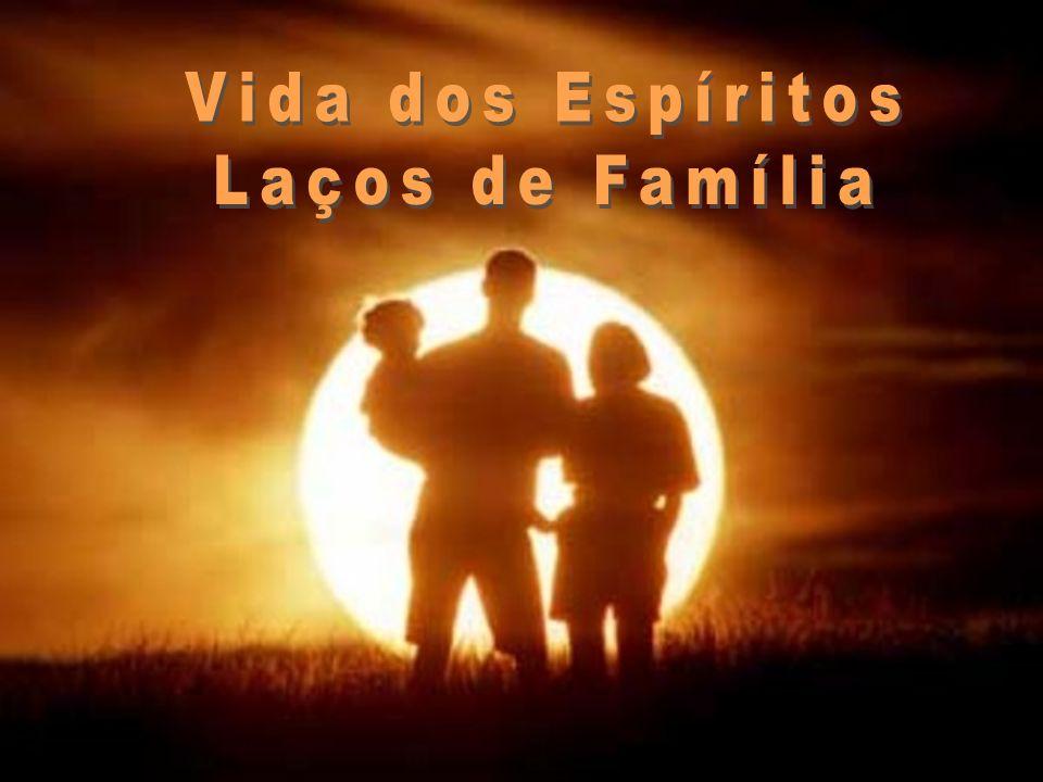 Vida dos Espíritos Laços de Família 25/03/2017