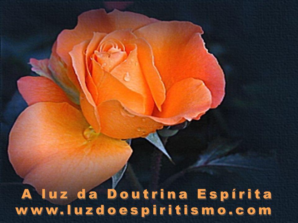 A luz da Doutrina Espírita