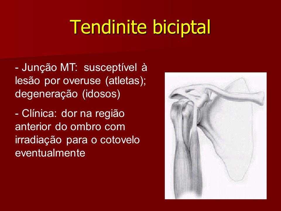Tendinite biciptal- Junção MT: susceptível à lesão por overuse (atletas); degeneração (idosos)