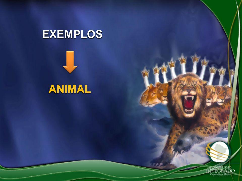 EXEMPLOS ANIMAL