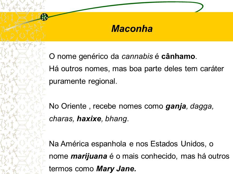 Maconha O nome genérico da cannabis é cânhamo.