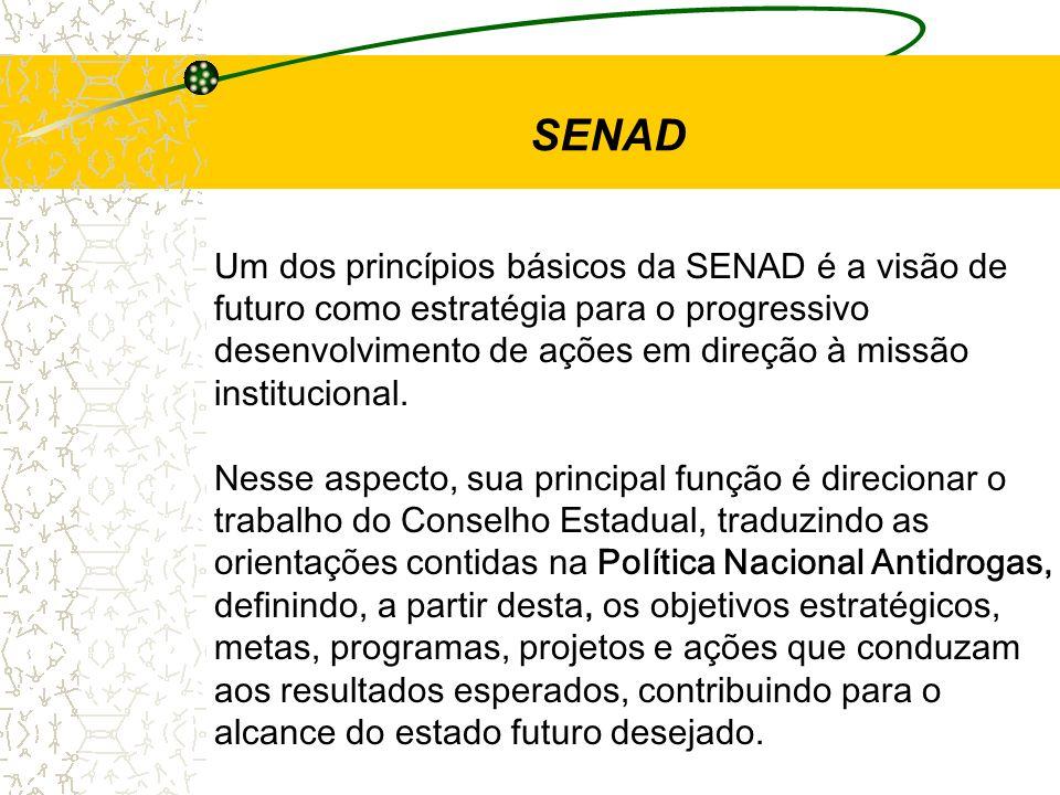SENAD Um dos princípios básicos da SENAD é a visão de