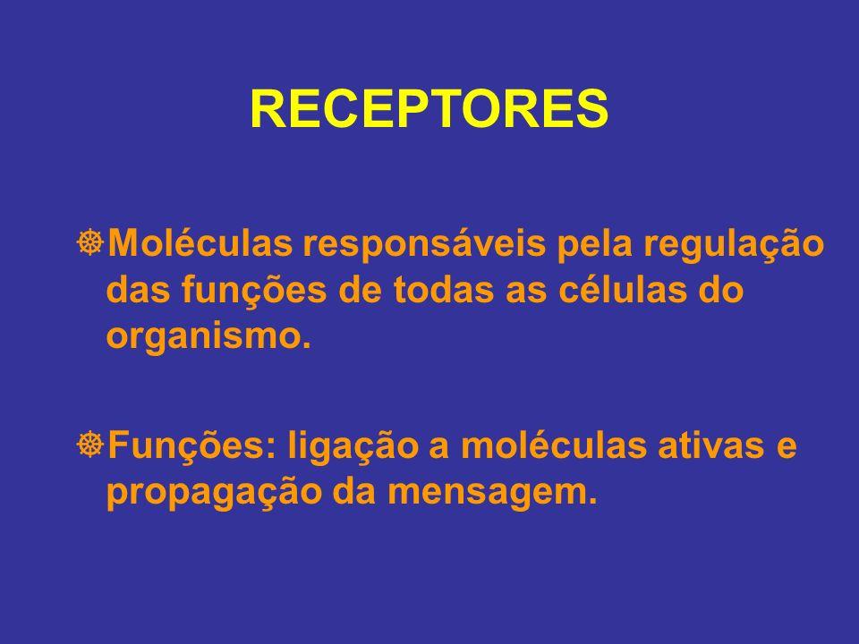 RECEPTORES Moléculas responsáveis pela regulação das funções de todas as células do organismo.