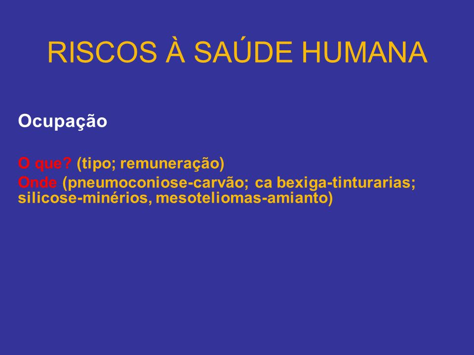 RISCOS À SAÚDE HUMANA Ocupação O que (tipo; remuneração)