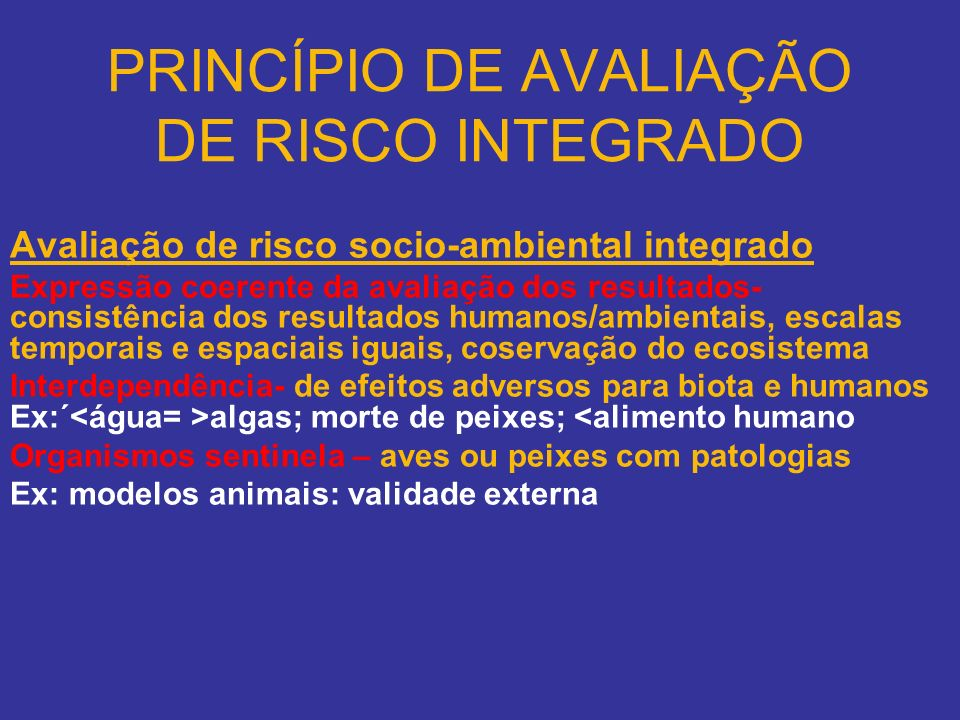PRINCÍPIO DE AVALIAÇÃO DE RISCO INTEGRADO