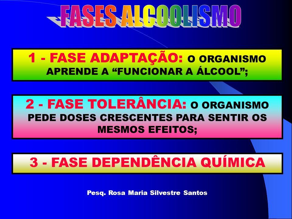 FASES ALCOOLISMO 1 - FASE ADAPTAÇÃO: O ORGANISMO APRENDE A FUNCIONAR A ÁLCOOL ;