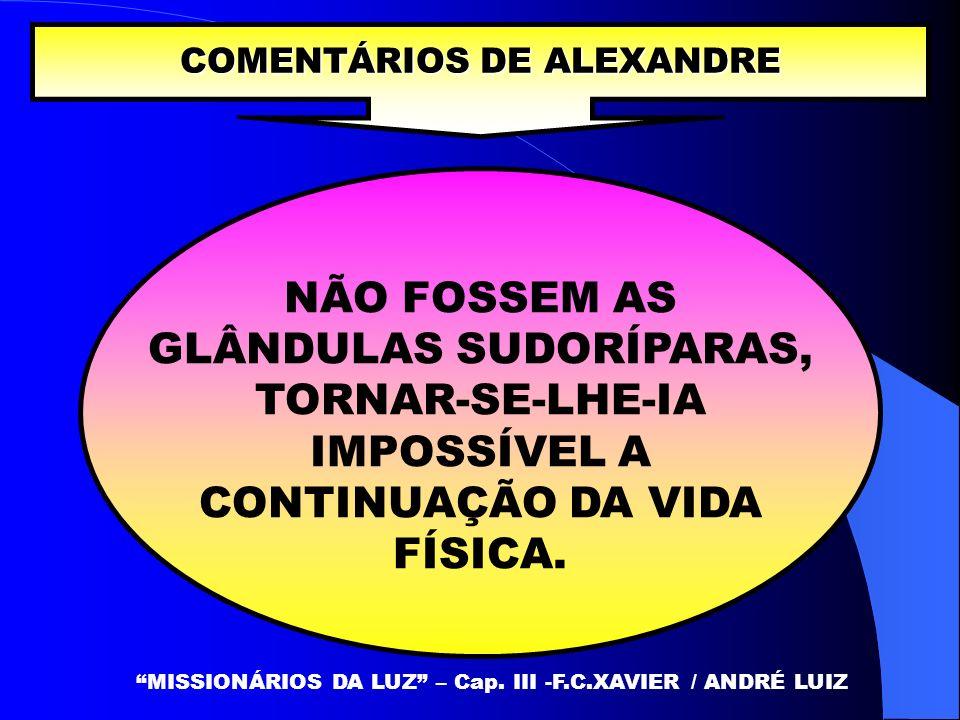 COMENTÁRIOS DE ALEXANDRE