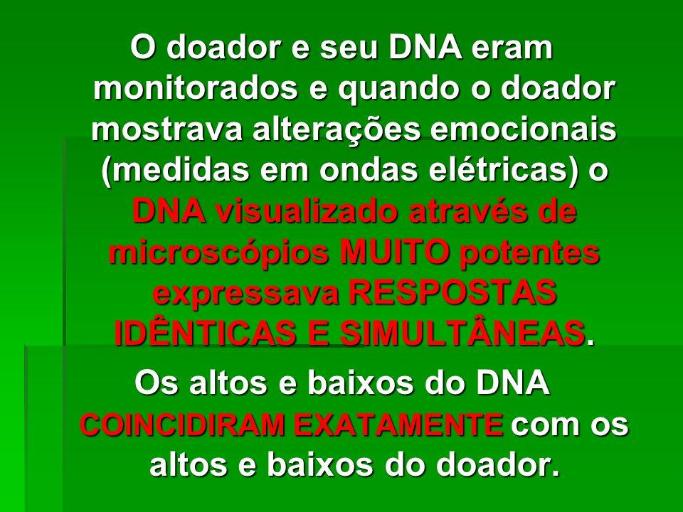 O doador e seu DNA eram monitorados e quando o doador mostrava alterações emocionais (medidas em ondas elétricas) o DNA visualizado através de microscópios MUITO potentes expressava RESPOSTAS IDÊNTICAS E SIMULTÂNEAS.