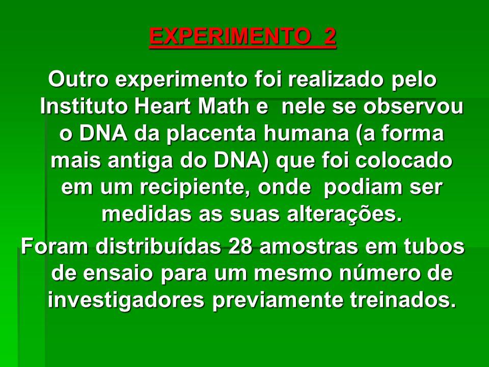 EXPERIMENTO 2