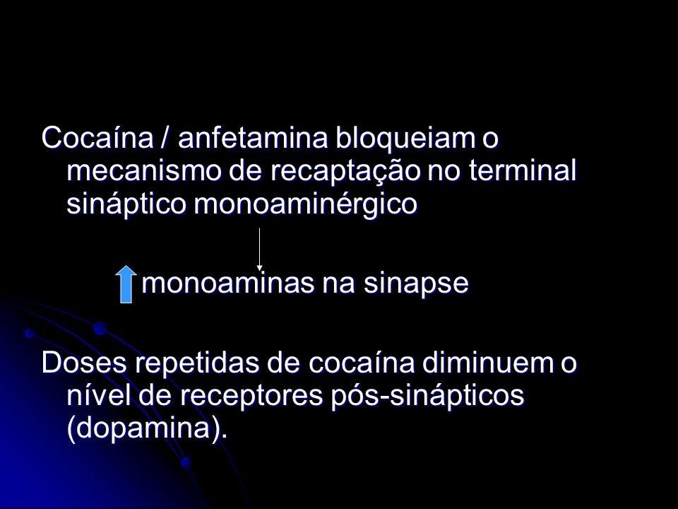 Cocaína / anfetamina bloqueiam o mecanismo de recaptação no terminal sináptico monoaminérgico