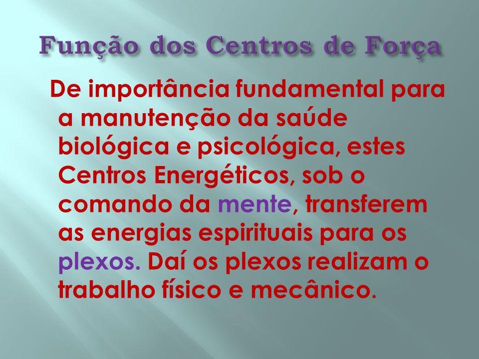 Função dos Centros de Força