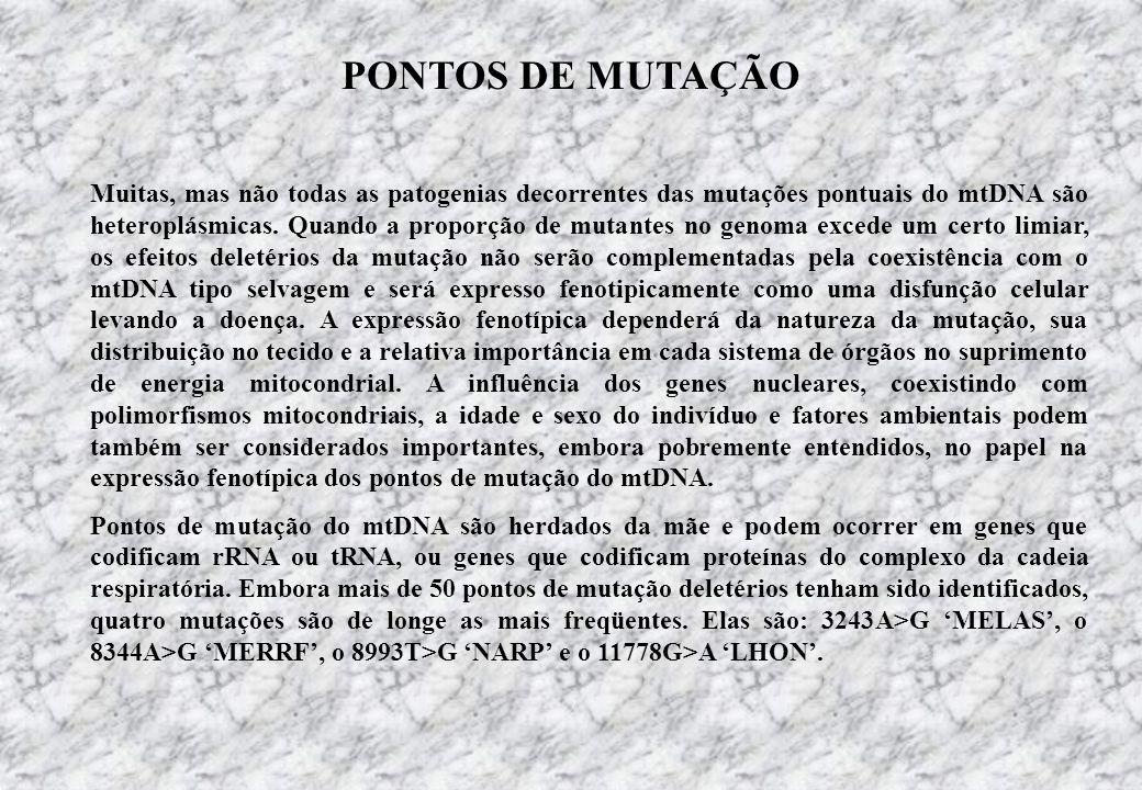 PONTOS DE MUTAÇÃO