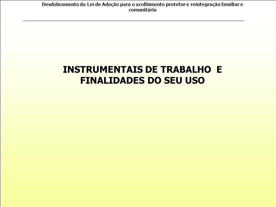 INSTRUMENTAIS DE TRABALHO E FINALIDADES DO SEU USO