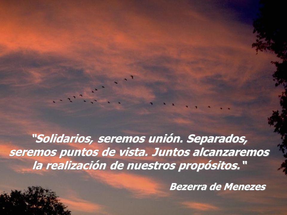 Solidarios, seremos unión. Separados, seremos puntos de vista