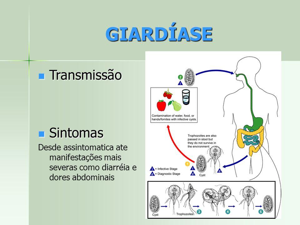 GIARDÍASE Transmissão Sintomas