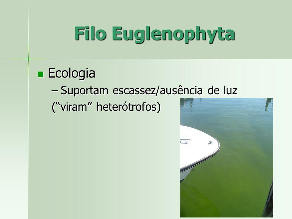 Filo Euglenophyta Ecologia Suportam escassez/ausência de luz