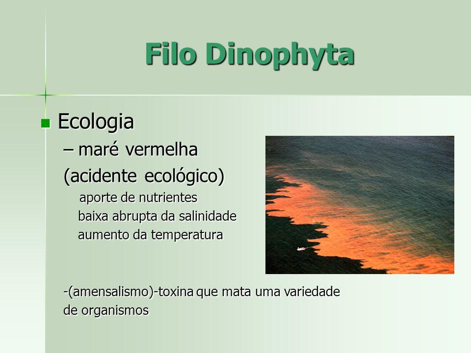 Filo Dinophyta Ecologia maré vermelha (acidente ecológico)