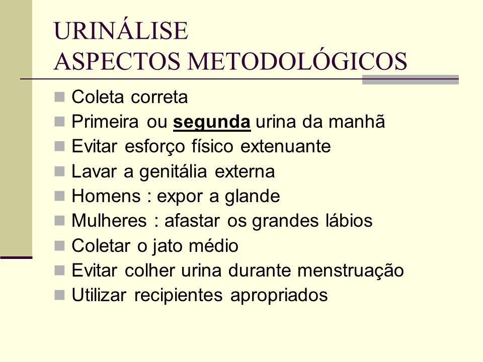 URINÁLISE ASPECTOS METODOLÓGICOS