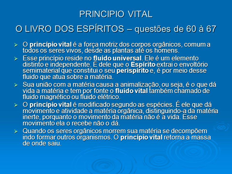 PRINCIPIO VITAL O LIVRO DOS ESPÍRITOS – questões de 60 à 67
