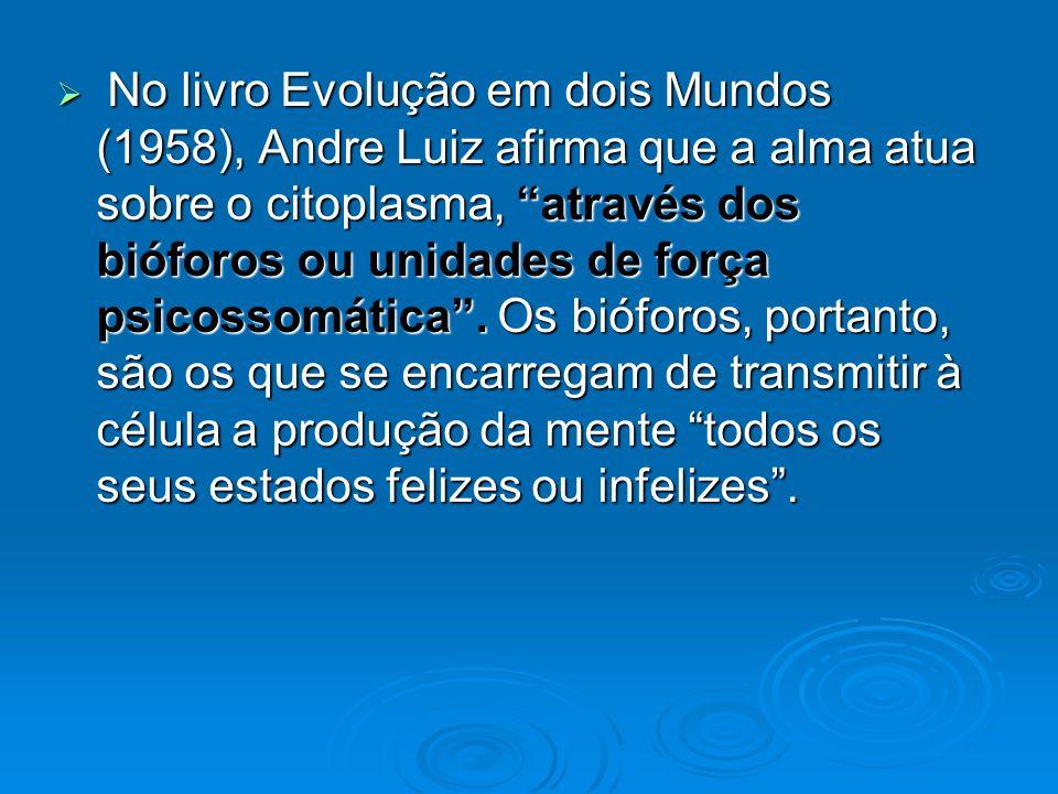 No livro Evolução em dois Mundos (1958), Andre Luiz afirma que a alma atua sobre o citoplasma, através dos bióforos ou unidades de força psicossomática .