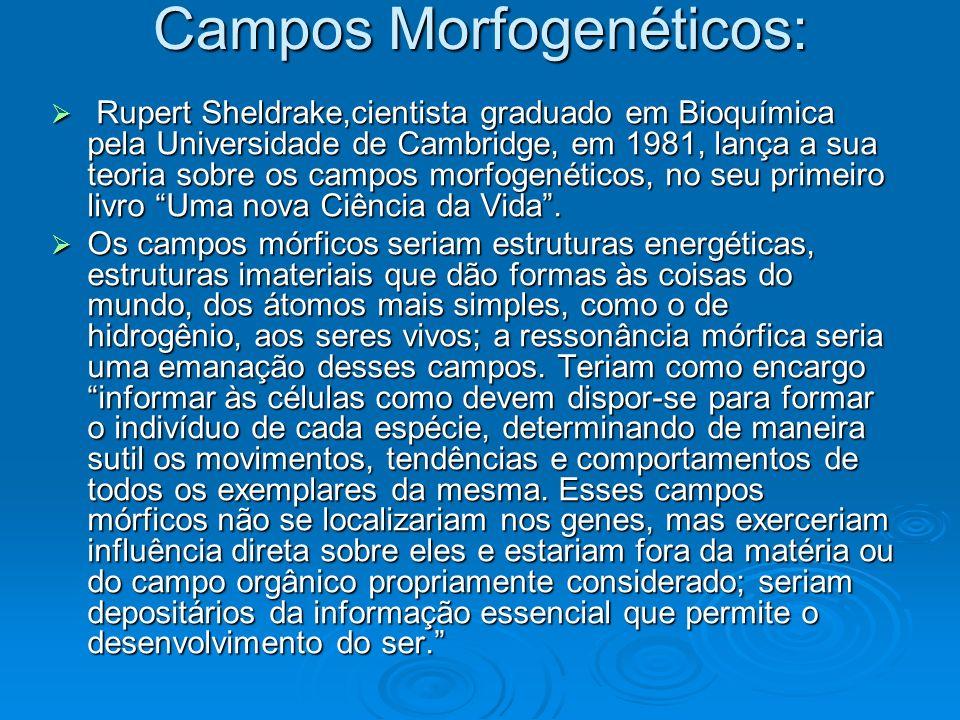 Campos Morfogenéticos: