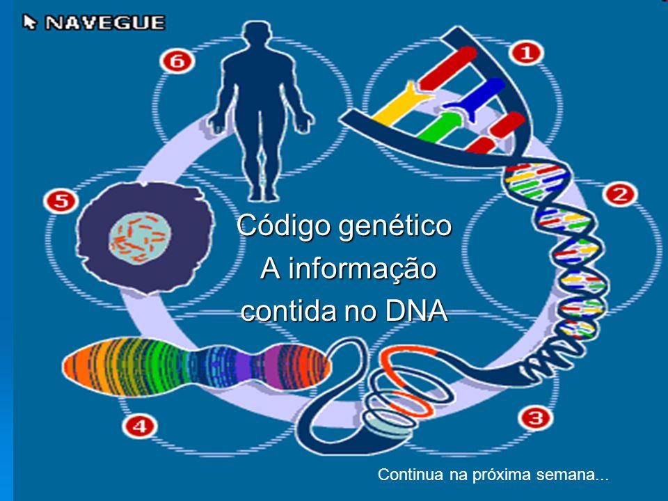 Código genético A informação contida no DNA