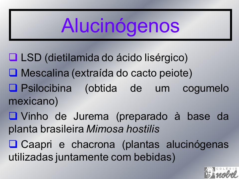 Alucinógenos LSD (dietilamida do ácido lisérgico)