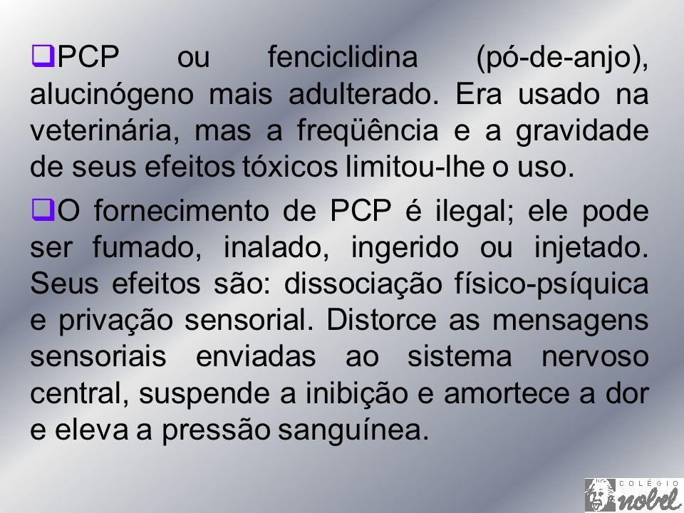 PCP ou fenciclidina (pó-de-anjo), alucinógeno mais adulterado