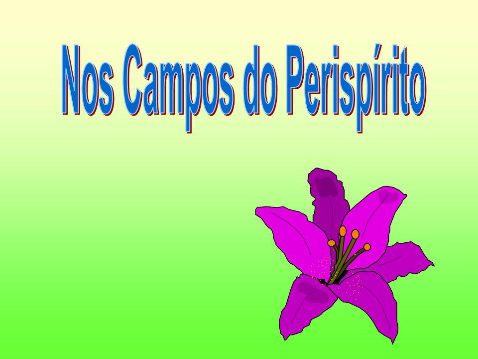 Nos Campos do Perispírito