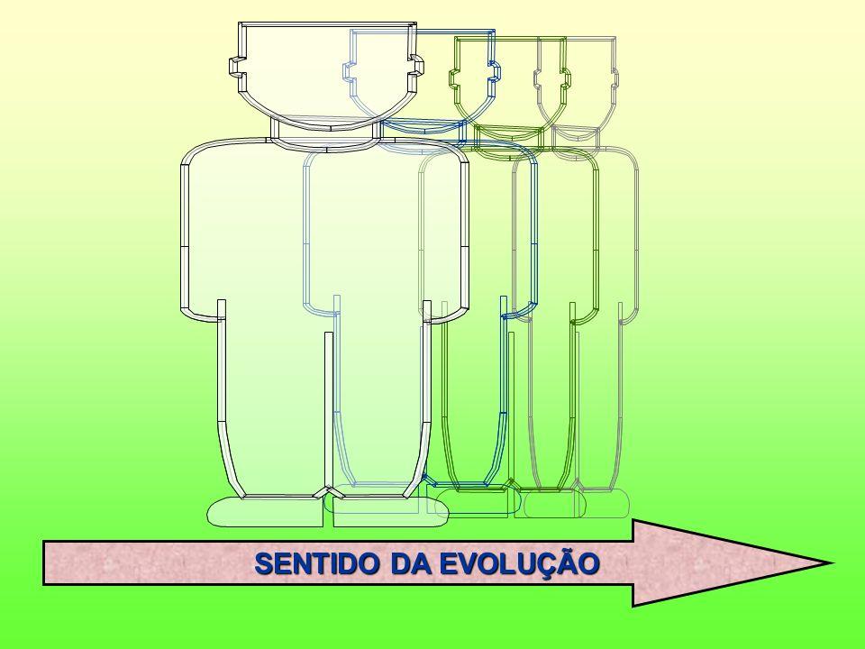 SENTIDO DA EVOLUÇÃO