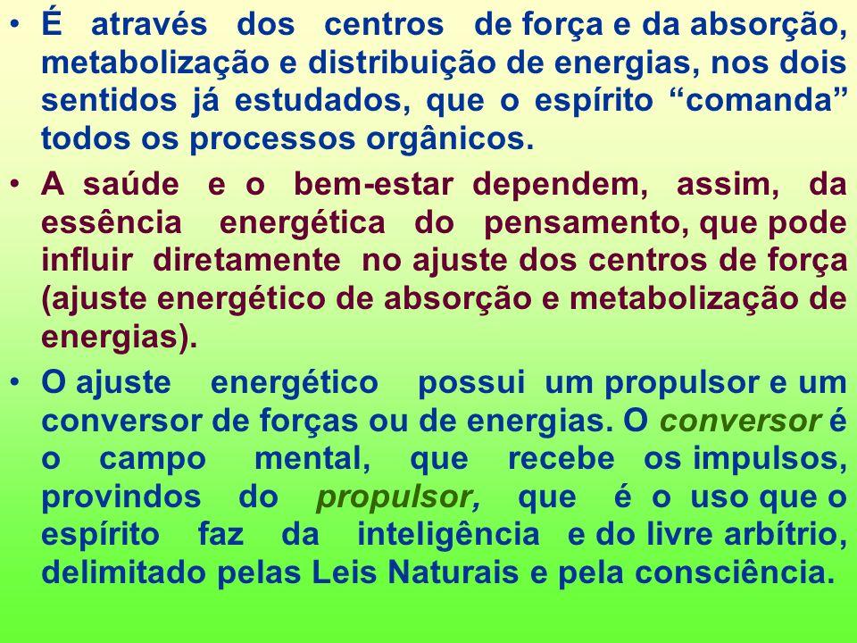 É através dos centros de força e da absorção, metabolização e distribuição de energias, nos dois sentidos já estudados, que o espírito comanda todos os processos orgânicos.