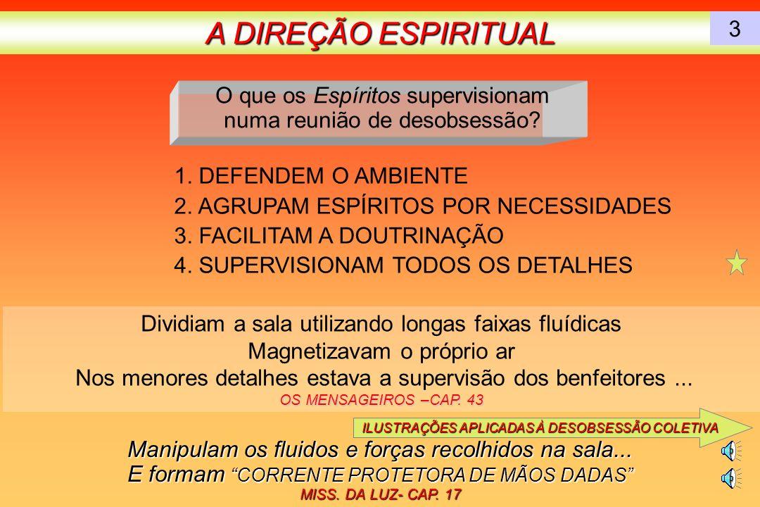 A DIREÇÃO ESPIRITUAL 3. O que os Espíritos supervisionam numa reunião de desobsessão