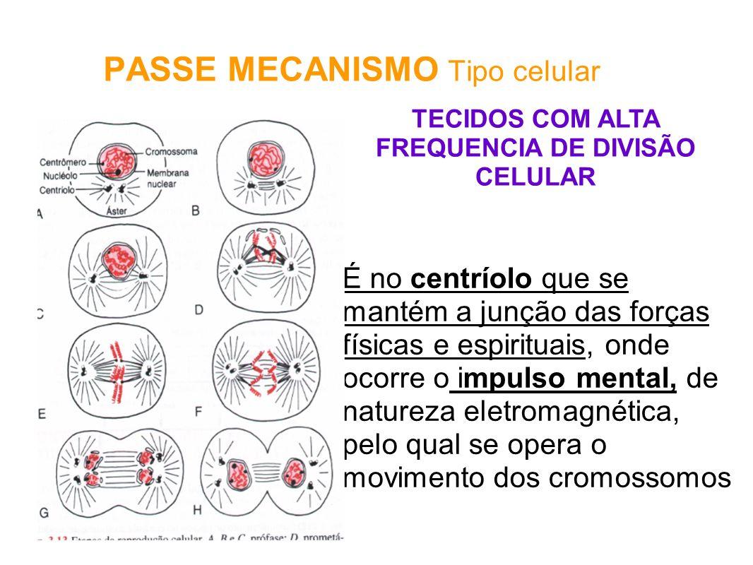 PASSE MECANISMO Tipo celular