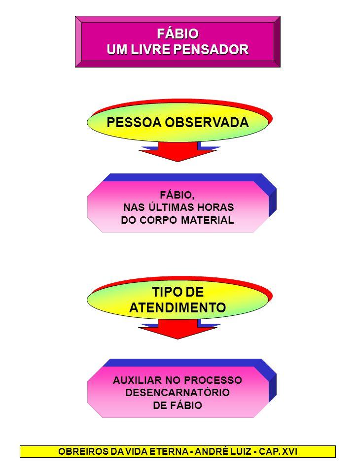 OBREIROS DA VIDA ETERNA - ANDRÉ LUIZ - CAP. XVI