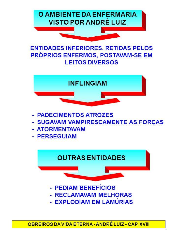 O AMBIENTE DA ENFERMARIA VISTO POR ANDRÉ LUIZ