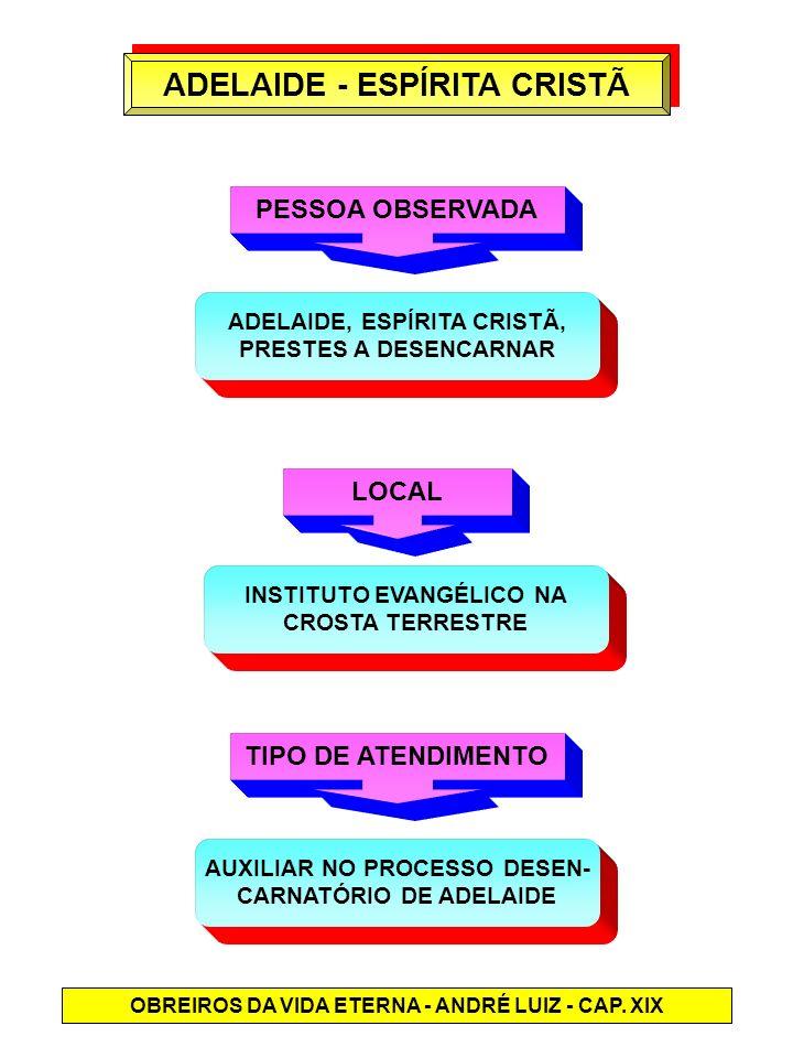 ADELAIDE - ESPÍRITA CRISTÃ