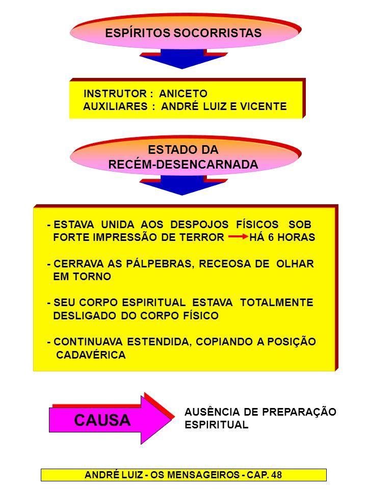 ESPÍRITOS SOCORRISTAS ANDRÉ LUIZ - OS MENSAGEIROS - CAP. 48