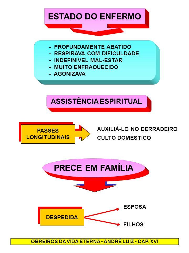 ASSISTÊNCIA ESPIRITUAL OBREIROS DA VIDA ETERNA - ANDRÉ LUIZ - CAP. XVI