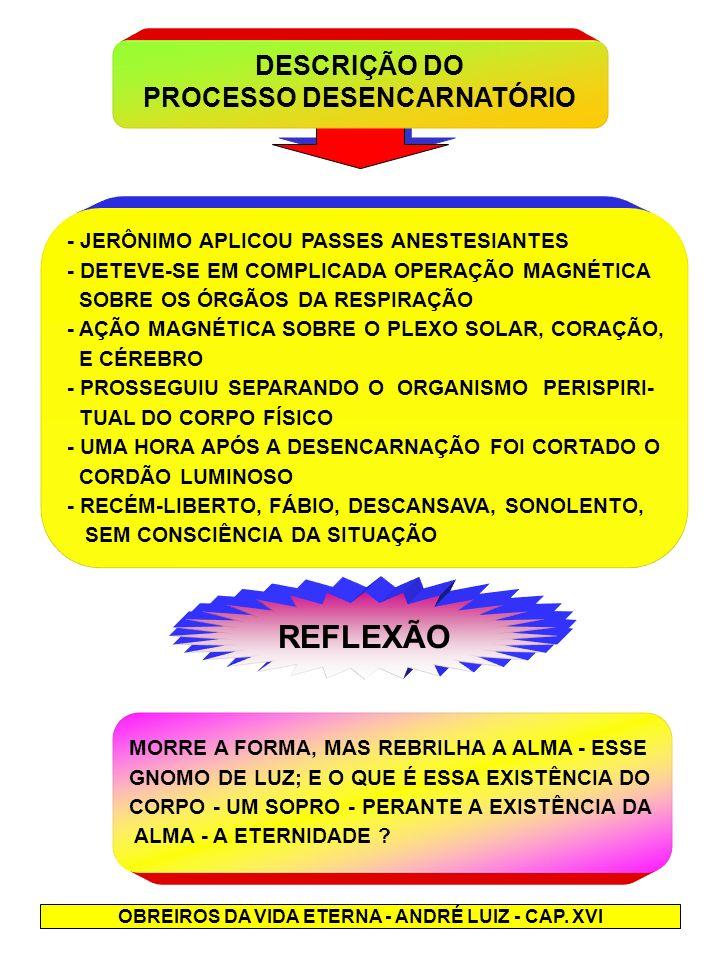 REFLEXÃO DESCRIÇÃO DO PROCESSO DESENCARNATÓRIO