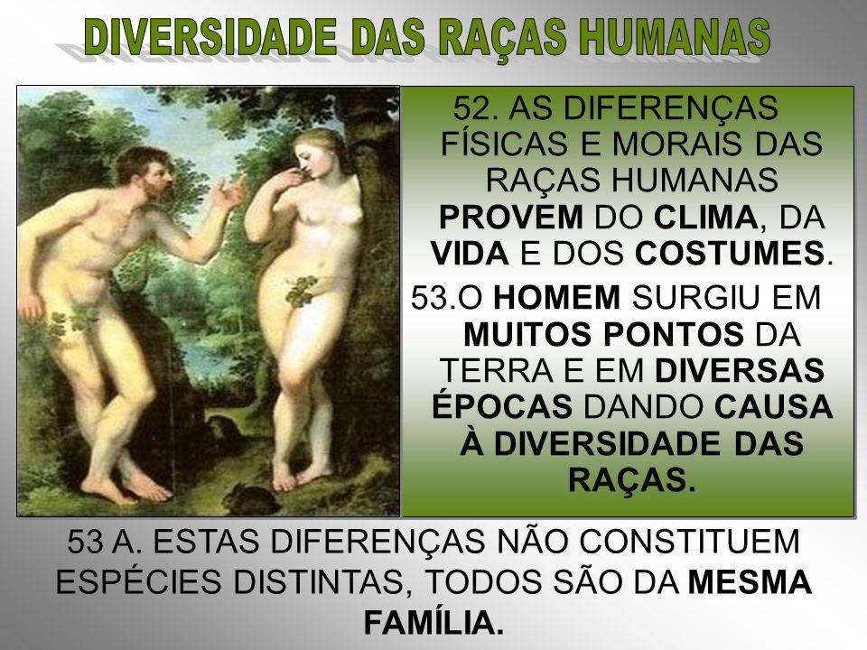 DIVERSIDADE DAS RAÇAS HUMANAS