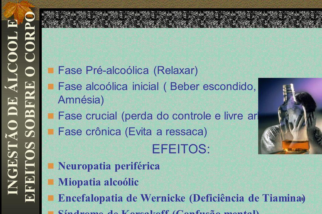 INGESTÃO DE ÁLCOOL E EFEITOS SOBFRE O CORPO