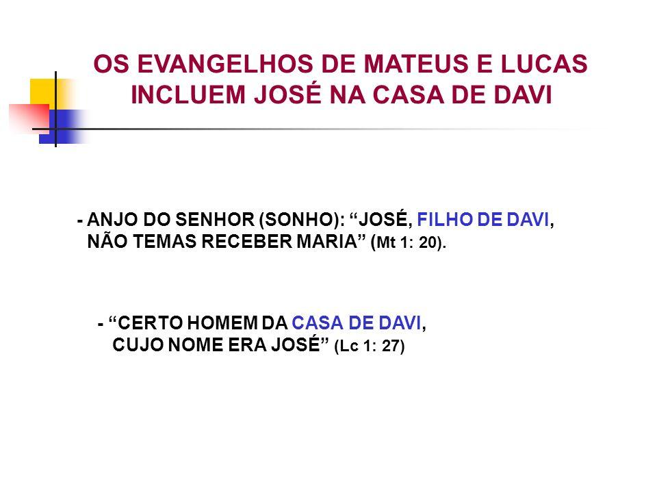 OS EVANGELHOS DE MATEUS E LUCAS INCLUEM JOSÉ NA CASA DE DAVI