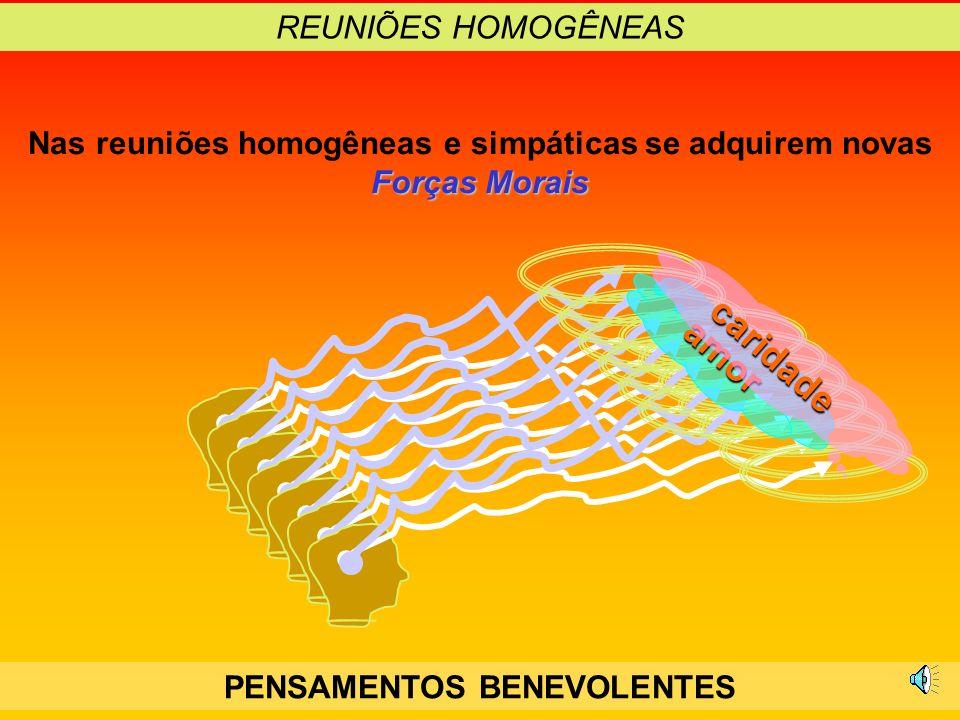 caridade amor REUNIÕES HOMOGÊNEAS