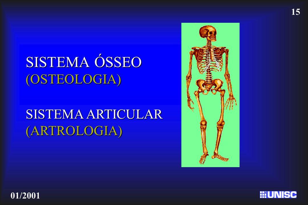 SISTEMA ÓSSEO (OSTEOLOGIA)