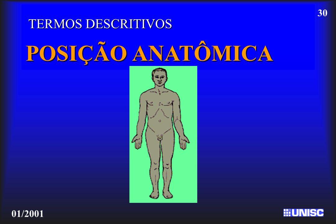TERMOS DESCRITIVOS POSIÇÃO ANATÔMICA