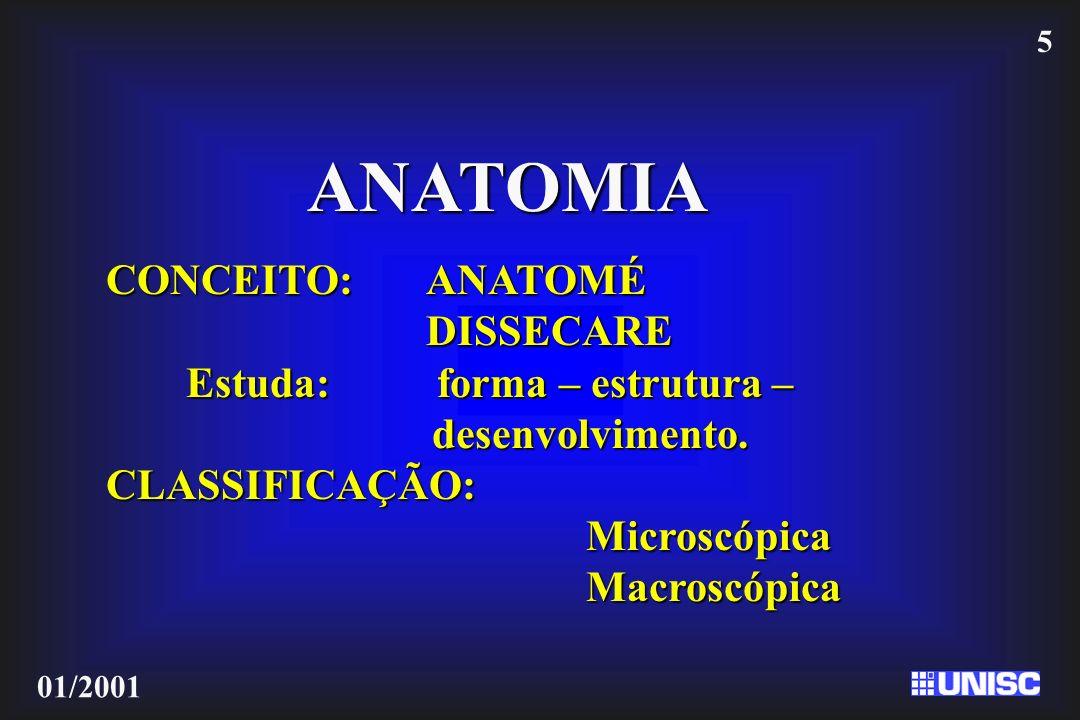 ANATOMIA CONCEITO: ANATOMÉ DISSECARE Estuda: forma – estrutura –