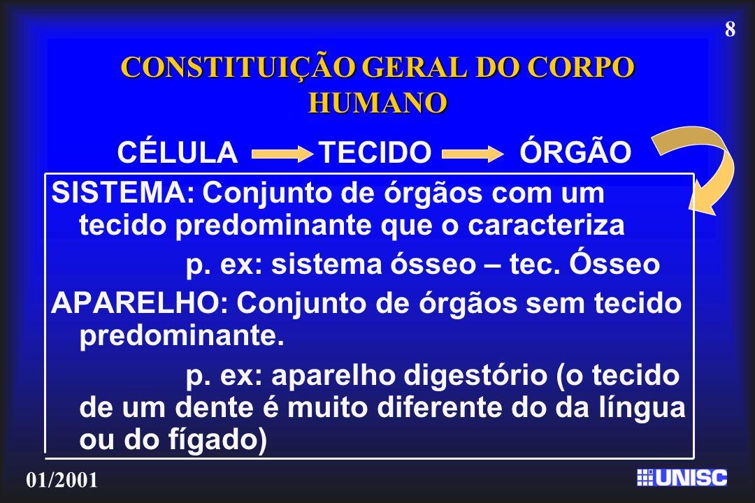 CONSTITUIÇÃO GERAL DO CORPO HUMANO