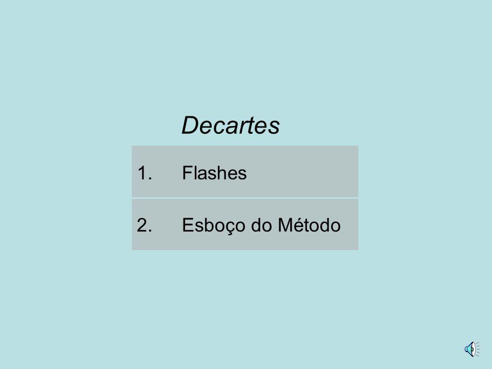 Decartes Flashes Esboço do Método