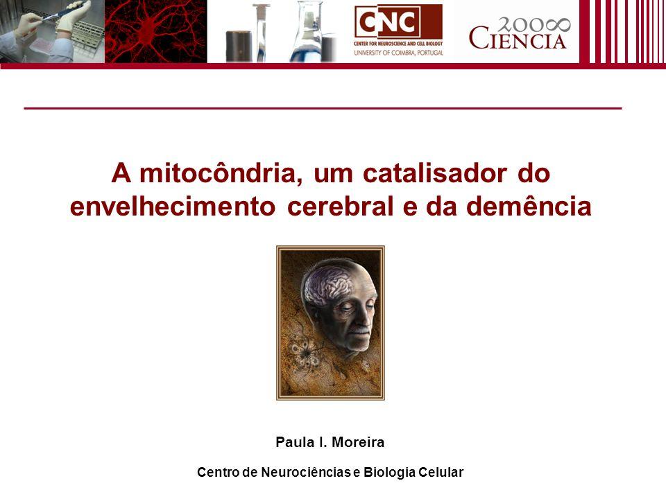 A mitocôndria, um catalisador do envelhecimento cerebral e da demência