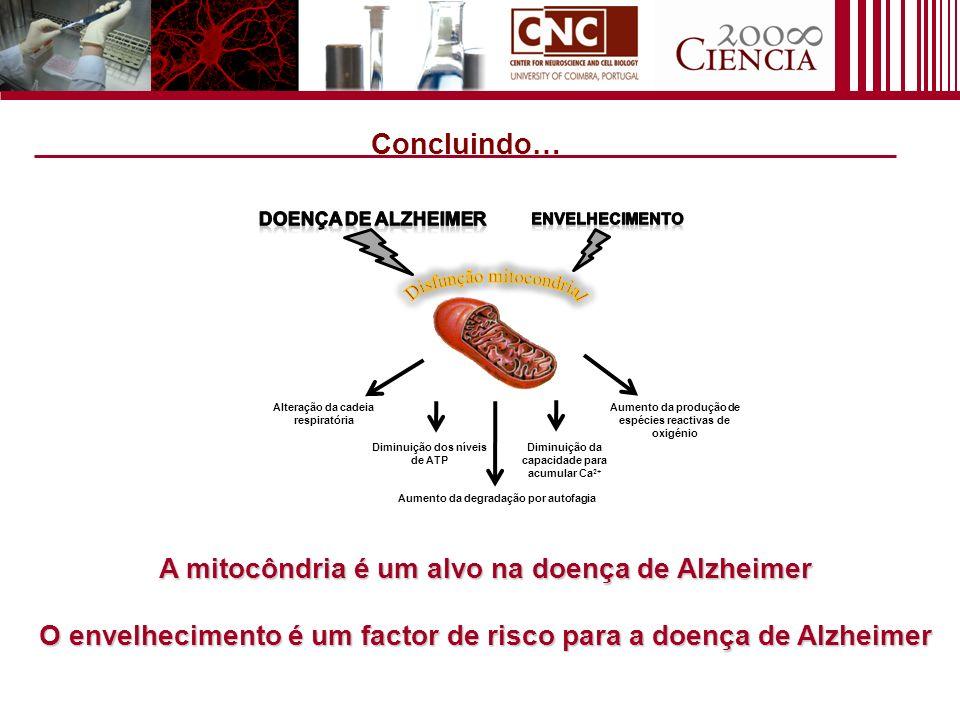Concluindo… A mitocôndria é um alvo na doença de Alzheimer
